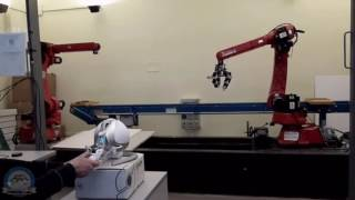 [B.Sc. Thesis] - Kinematic control of a robot manipulator through the Novint Falcon haptic device