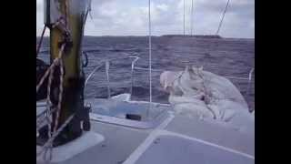 Catamaran Hirondelle 23 motoring at windforce 5