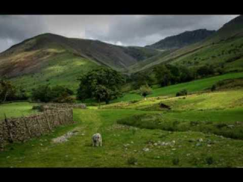 Riverdance - (Lord of the Dance) - Celtic - Dueling Violins