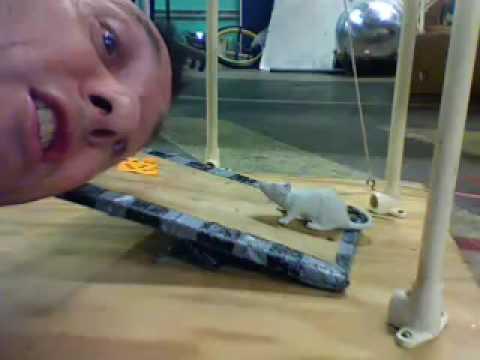 Mr. Sciences Ridiculous Mousetrap