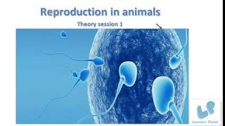 Online Video Lessons on Reproduction in Animals Theory Session for class 8 TS 1