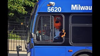 Be Like Roscoe: Ride MCTS to Admirals Home Games