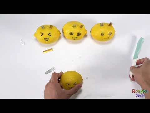 How to Use Lemon to Generate Electricity? - Lemon Battery