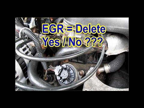 EGR = Delete or Not ? ? ?  YES / NO ? ? ? Learn how to from my mistakes!