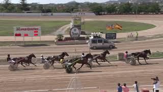 Vidéo de la course PMU PREMI ALCUDIA