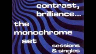 the monochrome set - silicon carne