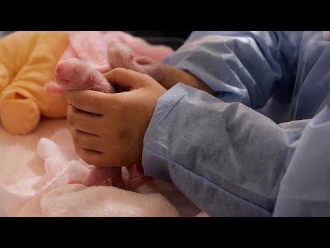 شاهد: ولادة صغيري باندا في حديقة حيوانات بوفال الفرنسية…  - نشر قبل 3 ساعة