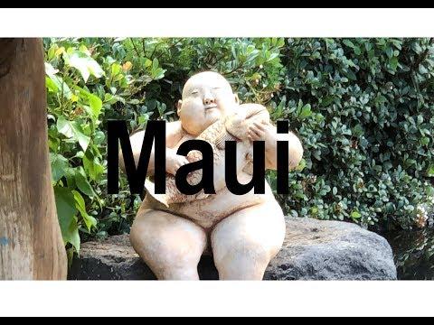 Hawai'i - Maui