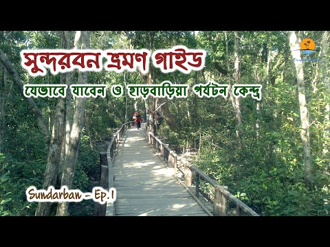 সুন্দরবন । Largest Mangrove Forest in the World । Way to Go । Harbaria । Sundarban - Part 1 । Khulna
