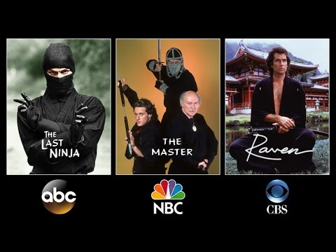 NINJA TV SERIES S: The Last Ninja 1983, The Master 1984, Raven 19921993