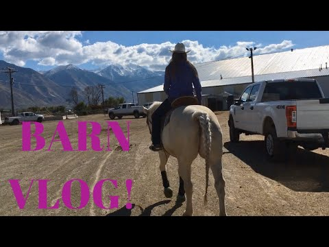 BARN VLOG // COME RIDE WITH ME
