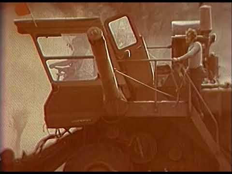 """""""Село моё, Золотое"""" (1969 год). Архив ГТРК """"Саратов"""""""