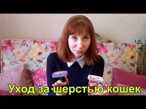 Уход за шерстью кошек | Шампуни | Фурминатор