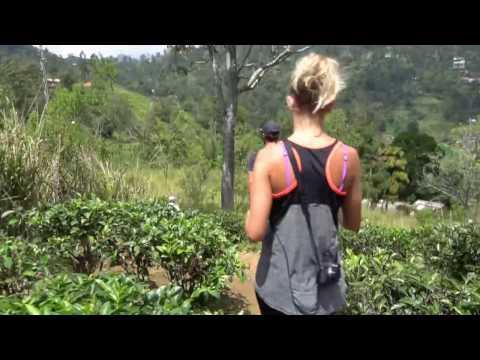 Ella Rock Guide Story, Visit Sri Lanka 21