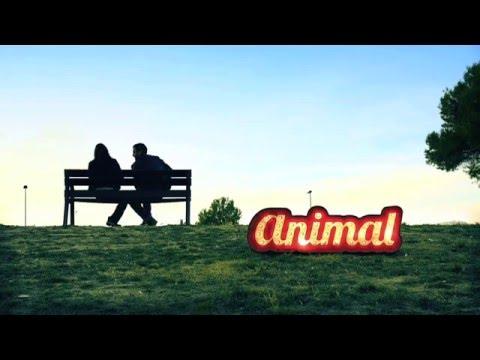 Animal - Fets a mida