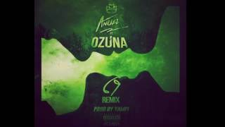anuel aa ft ozuna 69 official remix