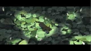 Adam and Dog Music Video [Mans Best Friend]