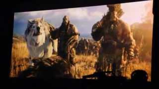 《魔獸爭霸》改編電影《魔獸:崛起》BlizzCon 現場首映