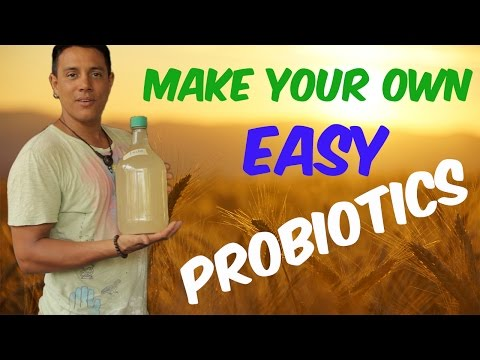 How to make your own easy (no whey) probiotics LACTO (tutorial) - VLOG #008