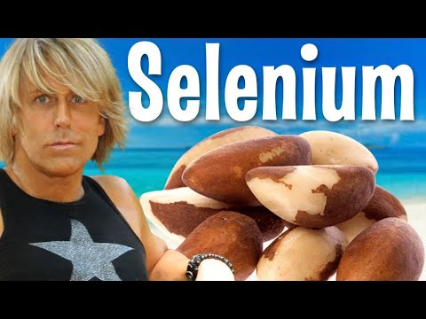 Selenium in Brazil Nuts Burn Fat, High Protein, Helps Prostate Cancer Colon Heart Cholesterol
