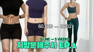 지방분해주사✨ 60KG → 56.8KG 한 달 만에 -…
