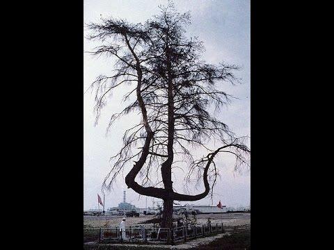 Чернобыль, Припять - запрещённый фильм