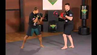 Mixed Martial Arts | Advanced | Ground and Pound Defenses | Counter Punching At Angles