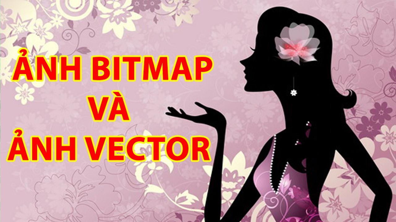 Photoshop và Illustrator phân biệt Ảnh vector, bitmap | Tự Học Đồ Hoạ
