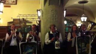 Hofbrauhaus musical performance