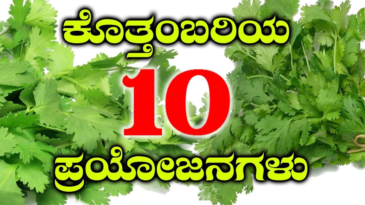 health benefits of fresh coriander leaves