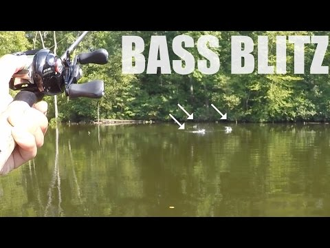 I LOVE BASS FISHING!!!