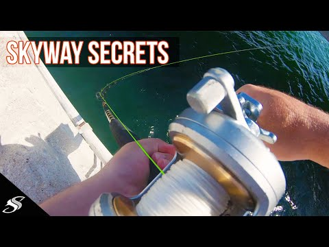 Skyway Fishing Pier Grouper Secret - Top Tip 😱