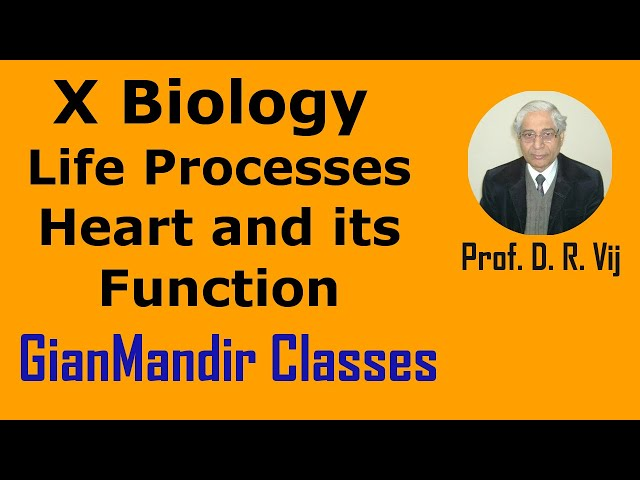 X Biology - Life Processes - Heart and its Function by Manjit Mam