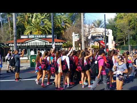 Walt Disney World Disney&39;s Hollywood Studios   More Random Tour Groups Turismos