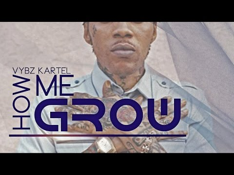 Vybz Kartel - How Me Grow [Farr Out Riddim] October 2015