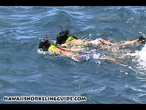 Hawaii Snorkeling Guide - Waikiki Turtle Snorkel Sail review