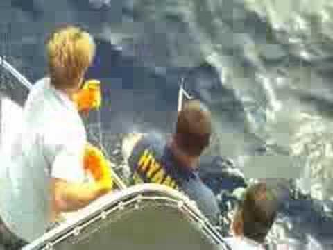 Fishing Kona-Ahi