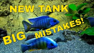 African Cichlids: Setting Up a New Tank - Hard Lessons