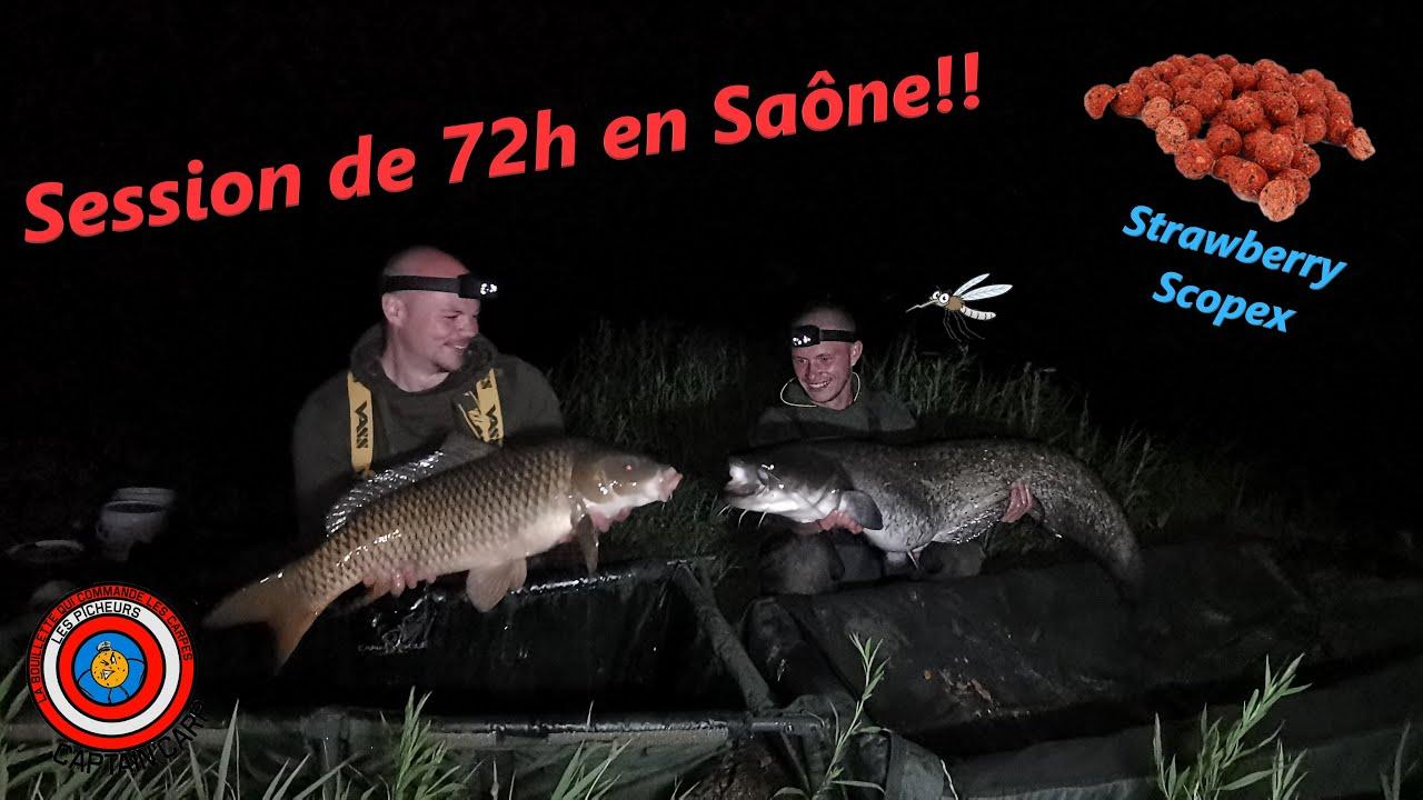 "SESSION 72H ""des carpes et des silures"""