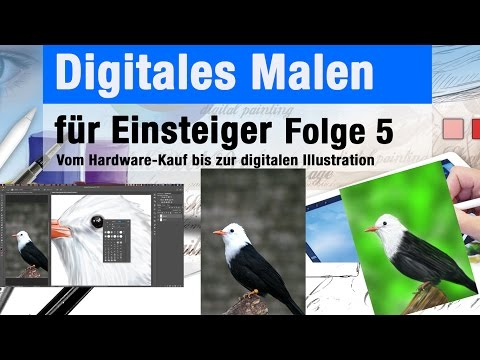 Tutorial Vogel malen mit Photoshop - Digitales Malen für Ein