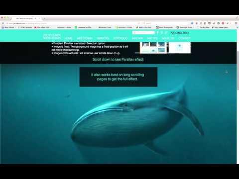 denver-wix-web-designer-–-parallax-scrolling-demonstration