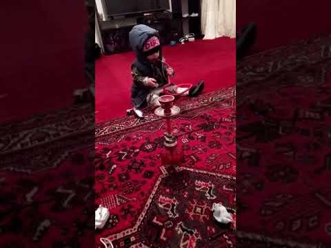 10 MONTHS GANGSTER BABY SMOKES SHISHA