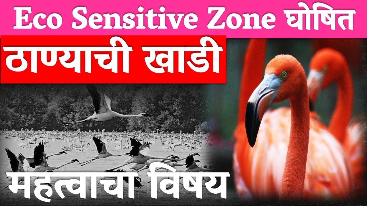 Vimp Eco Sensitive Zone घोषित | ठाण्याची खाडी | Environment #Geography #MPSC #COMBINE #VISION STUDY