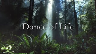 Dance of Life - Available Now!