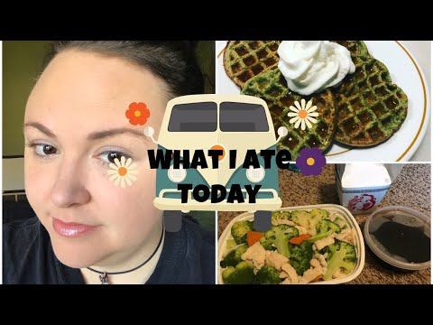 what-i-ate-today--quitting-ww??-thrift-haul