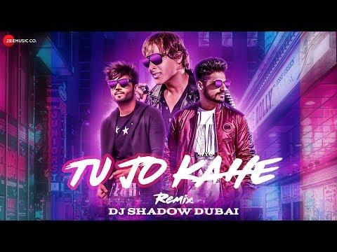 Tu Jo Kahe - Remixed By DJ Shadow | Salman Mithani Ft. Karan Singh Arora