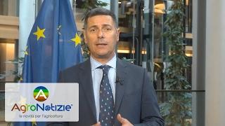 Accordo Ue-Canada, il Parlamento europeo approva