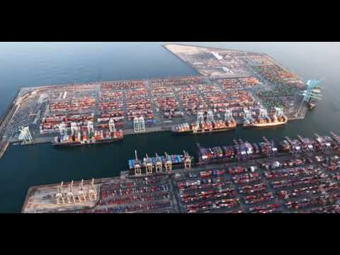 Supply Chain Halted At The Port of Los Angeles