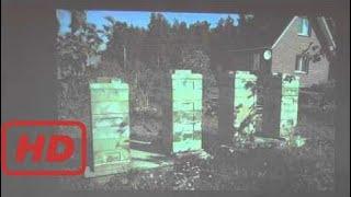 машинное оборудование Пчеловодство в странах экваториальной Африки  Выступление См волшебная машина