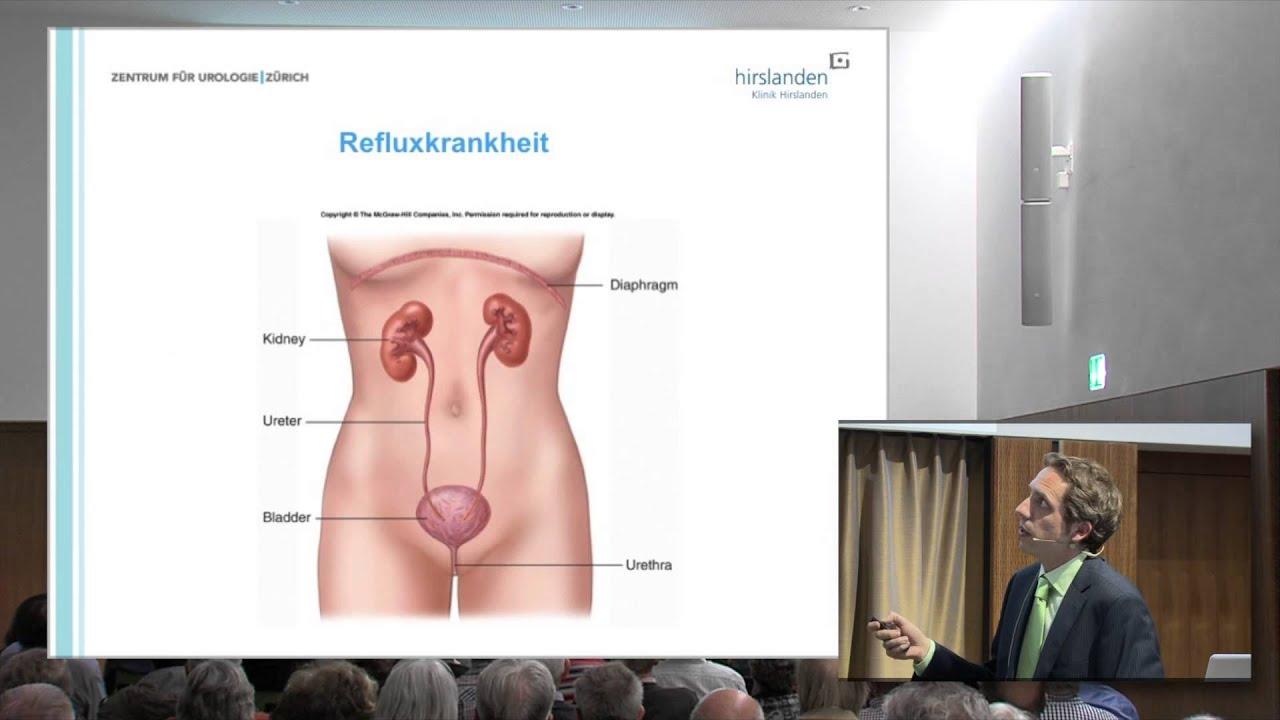 Prostata, Nieren und Blase - Teil 4 - YouTube